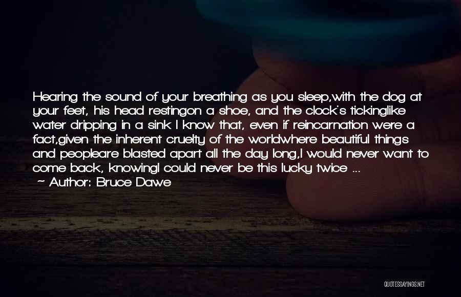 Clock Ticking Quotes By Bruce Dawe