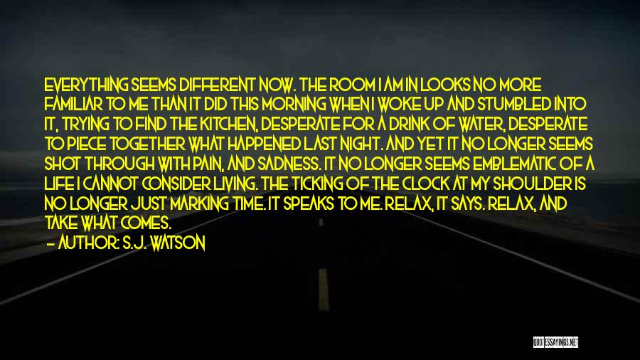 Clock Ticking Quotes By S.J. Watson
