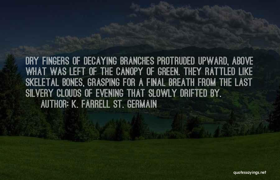 Clouds And Death Quotes By K. Farrell St. Germain
