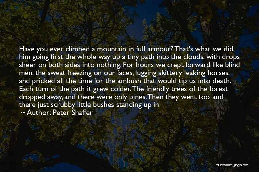 Clouds And Death Quotes By Peter Shaffer