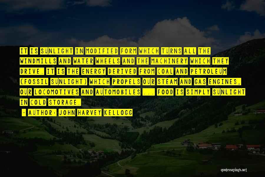 Coal And Petroleum Quotes By John Harvey Kellogg