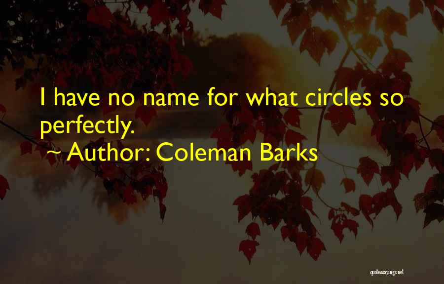 Coleman Barks Quotes 939551