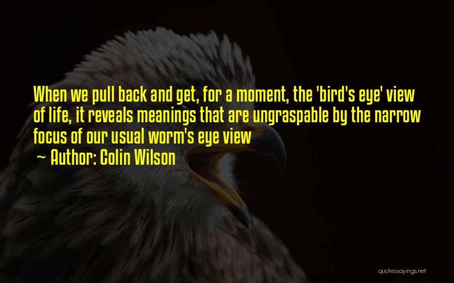 Colin Wilson Quotes 1066507