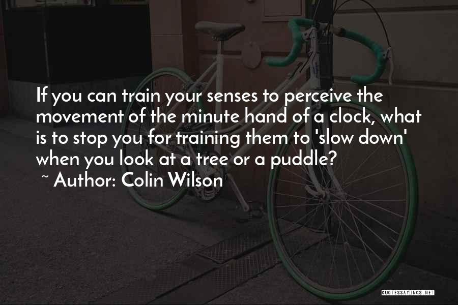 Colin Wilson Quotes 1919076