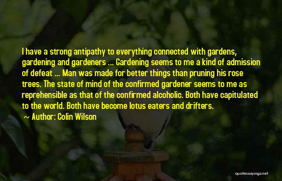 Colin Wilson Quotes 903809