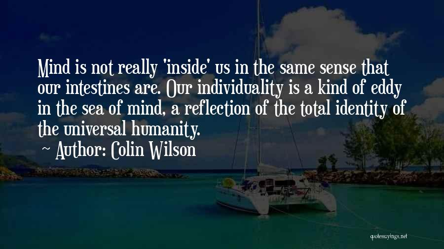 Colin Wilson Quotes 96660