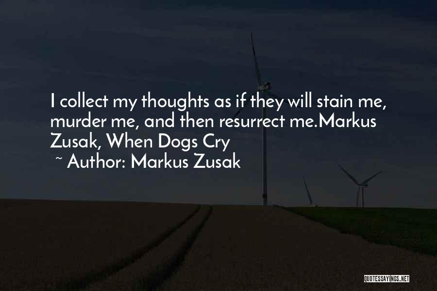Collect Your Thoughts Quotes By Markus Zusak