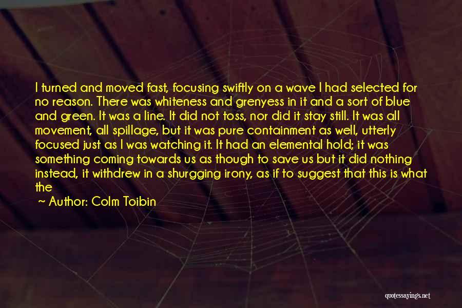 Colm Toibin Quotes 1218875
