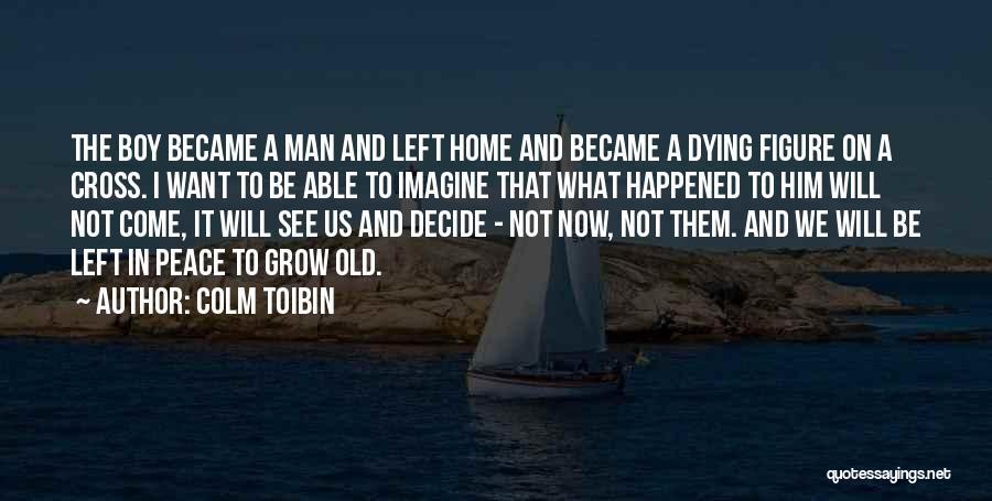Colm Toibin Quotes 1316278