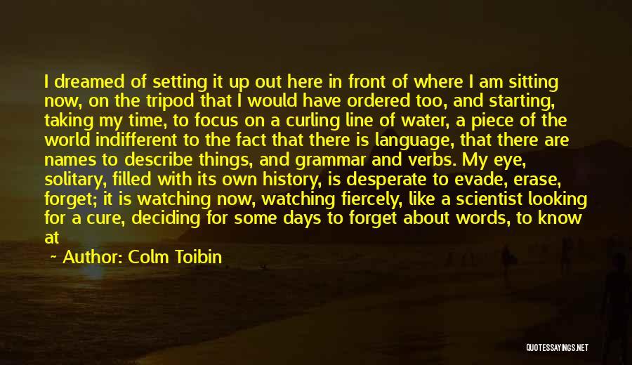 Colm Toibin Quotes 1425599