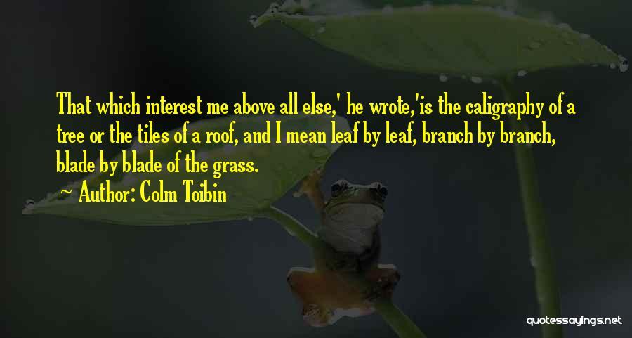 Colm Toibin Quotes 1691507