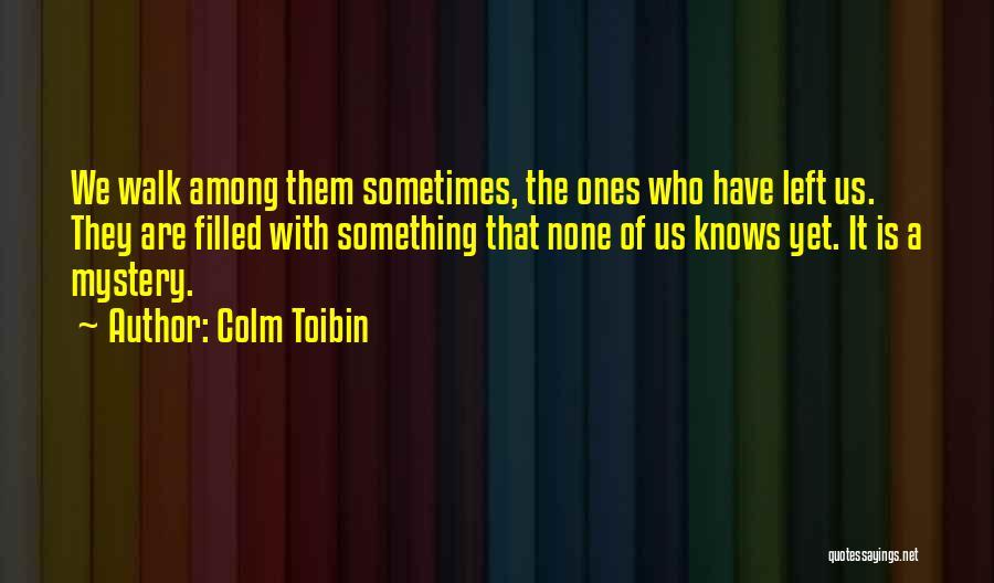 Colm Toibin Quotes 2194699