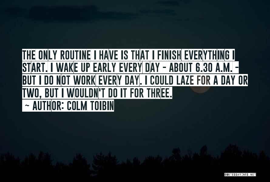 Colm Toibin Quotes 2248258