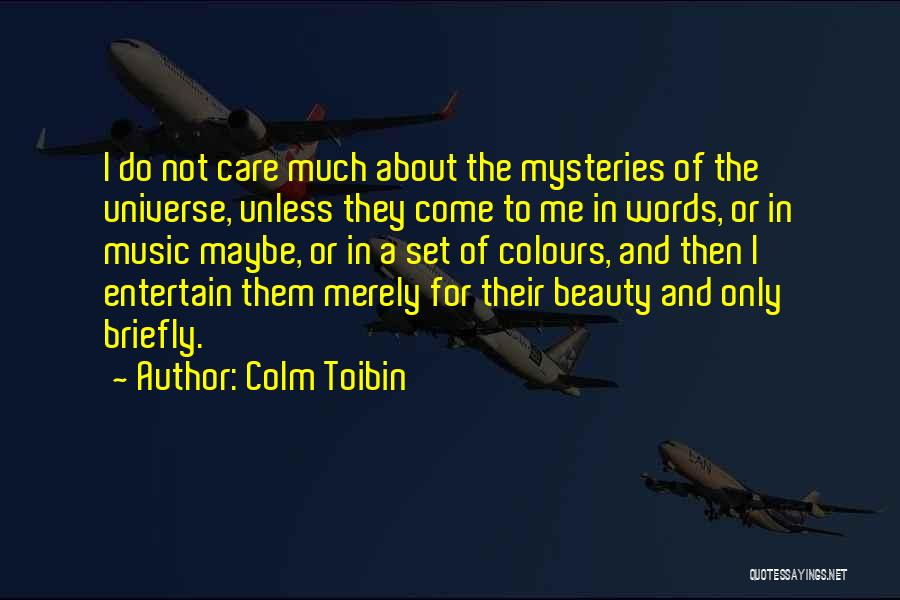 Colm Toibin Quotes 289371
