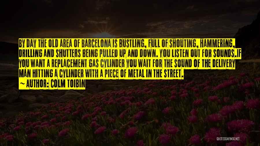 Colm Toibin Quotes 354199