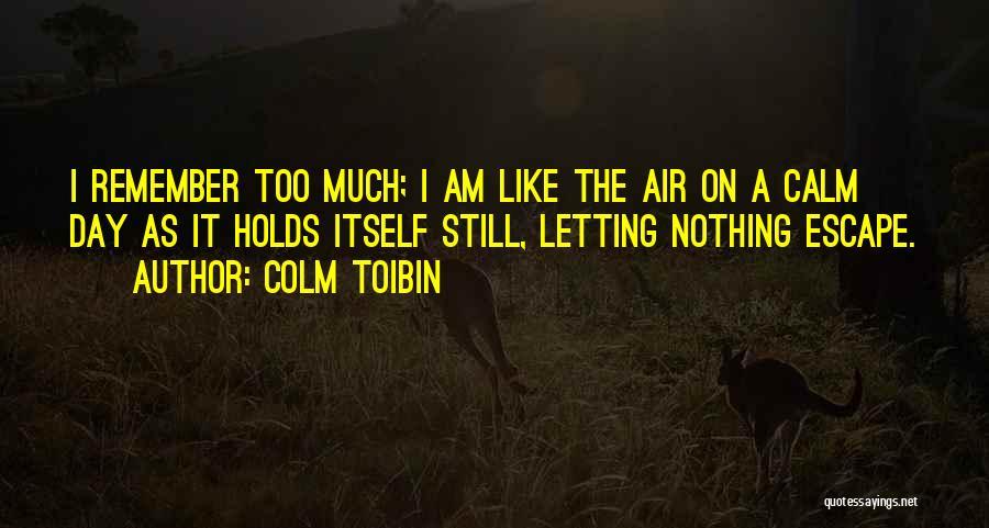 Colm Toibin Quotes 565141