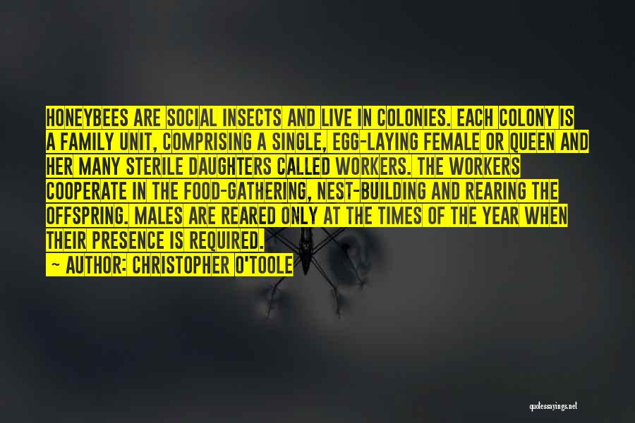 Colony Quotes By Christopher O'Toole