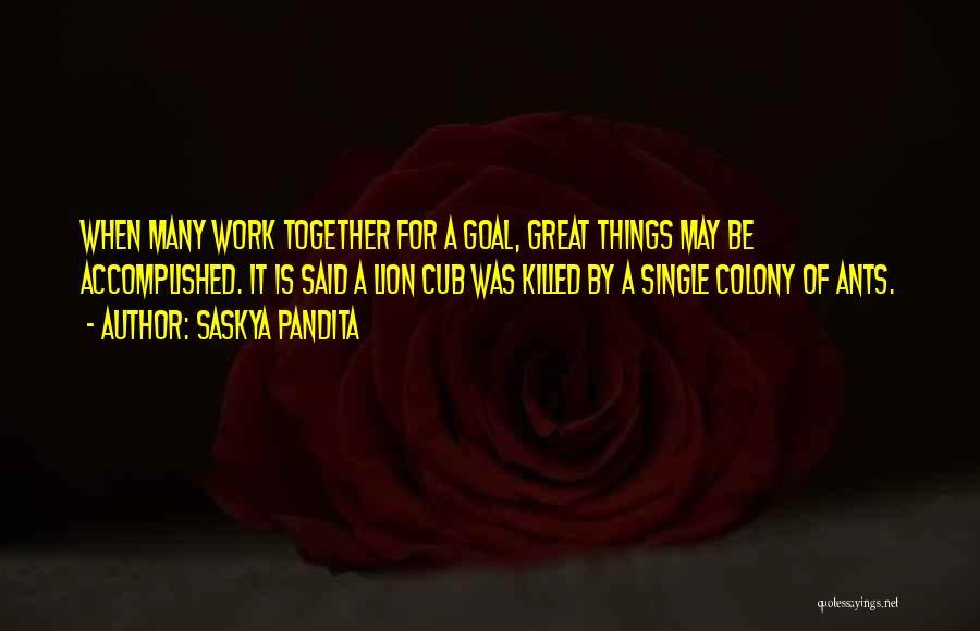 Colony Quotes By Saskya Pandita