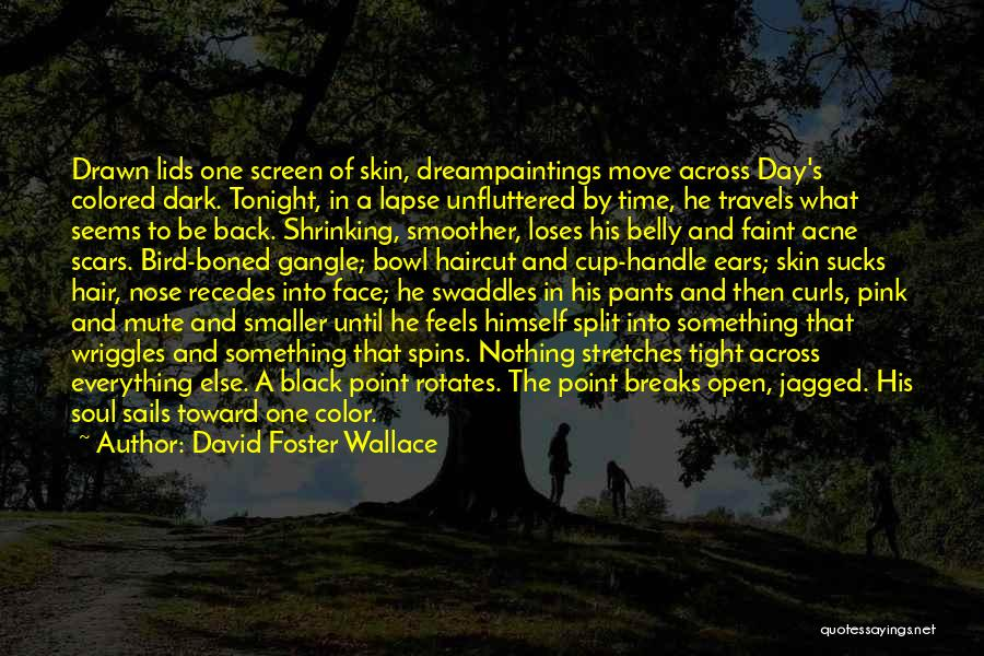 Colored Skin Quotes By David Foster Wallace