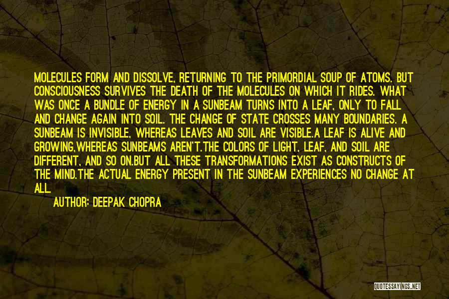 Colors Of Fall Quotes By Deepak Chopra
