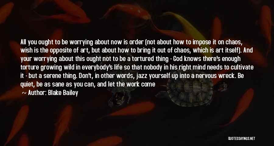 Come Along Quotes By Blake Bailey