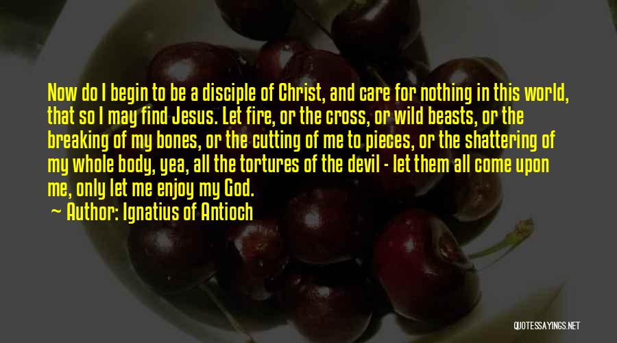 Come And Enjoy Quotes By Ignatius Of Antioch