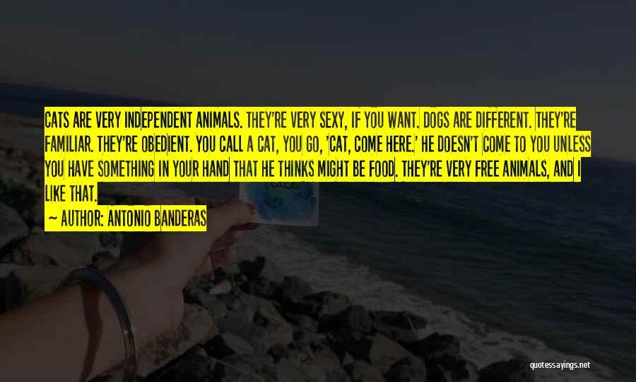 Come And Go Quotes By Antonio Banderas