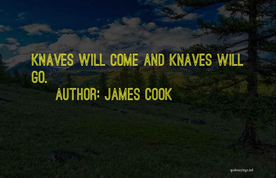 Come And Go Quotes By James Cook