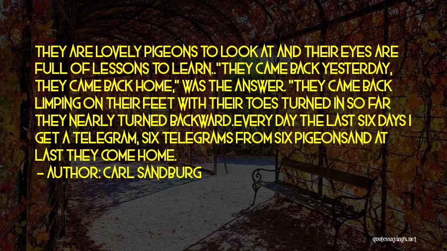 Come Back Home Quotes By Carl Sandburg