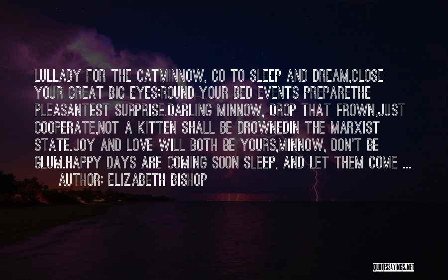 Come To Bed Eyes Quotes By Elizabeth Bishop
