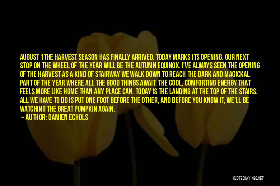 Comforting Yourself Quotes By Damien Echols