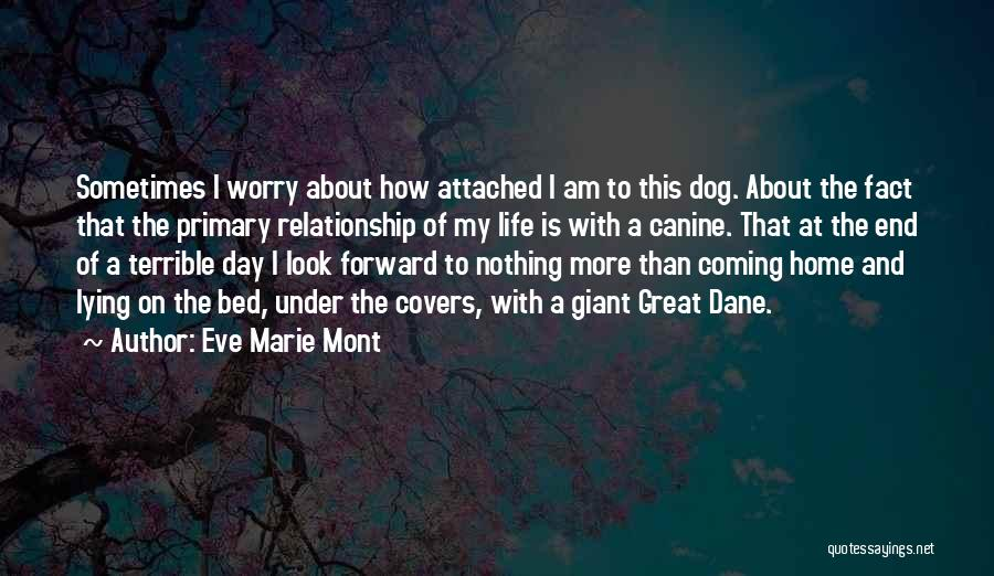 Coming Home To Your Dog Quotes By Eve Marie Mont