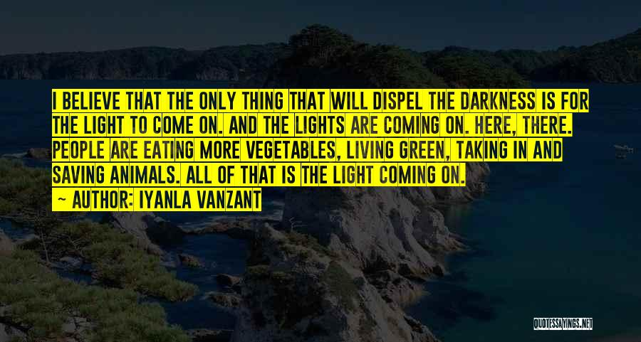 Coming Out Of The Darkness Into The Light Quotes By Iyanla Vanzant