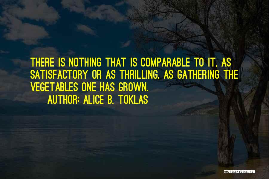 Comparable Quotes By Alice B. Toklas