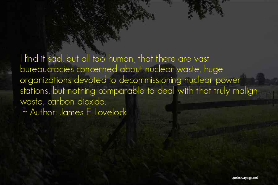 Comparable Quotes By James E. Lovelock