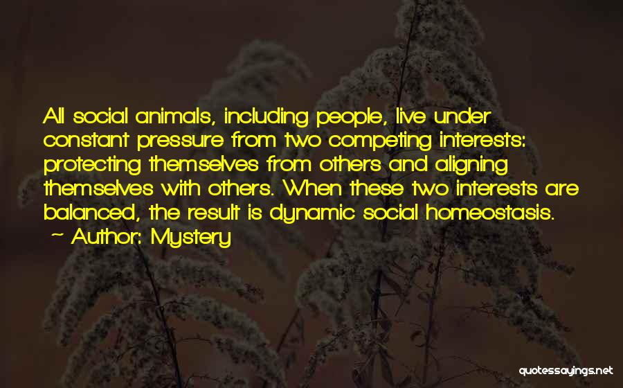 Competing With Others Quotes By Mystery