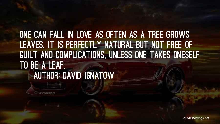 Complications In Love Quotes By David Ignatow