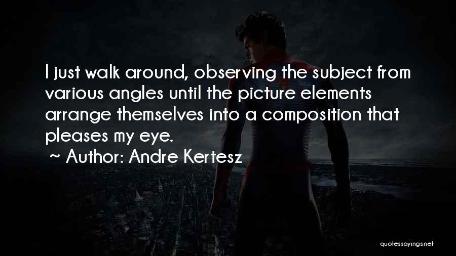 Composition Quotes By Andre Kertesz