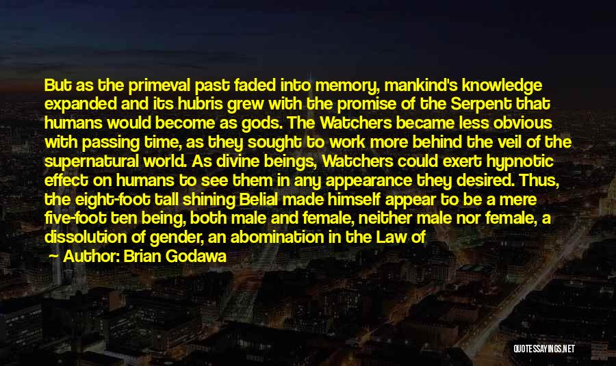 Condemnation Quotes By Brian Godawa