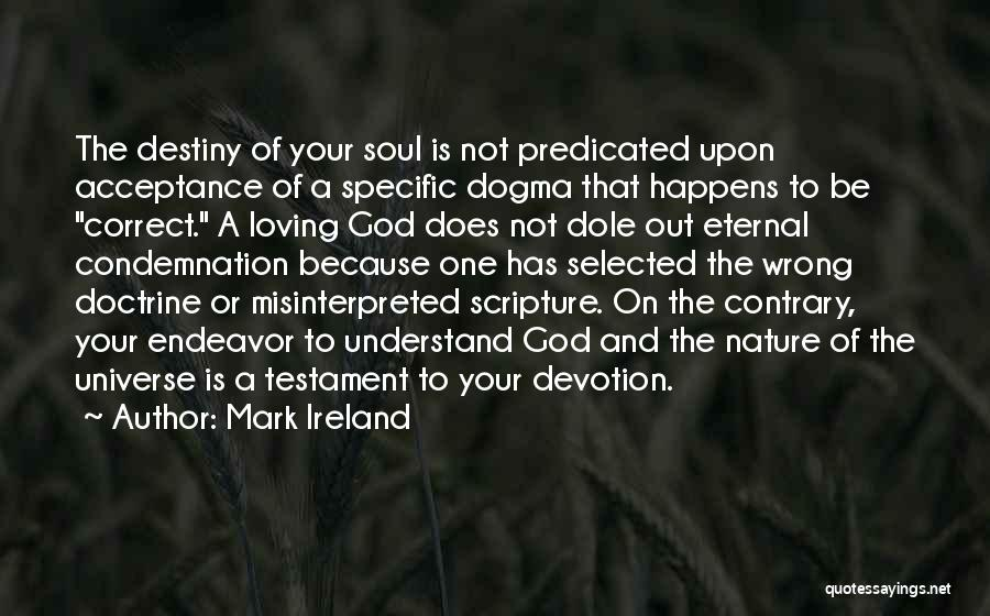 Condemnation Quotes By Mark Ireland