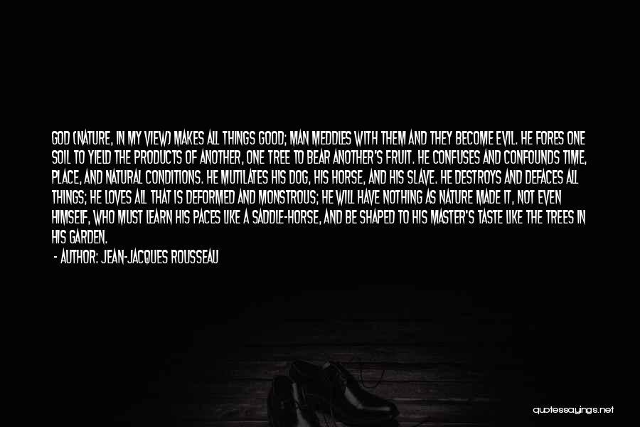 Confuses Quotes By Jean-Jacques Rousseau