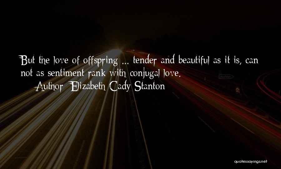 Conjugal Love Quotes By Elizabeth Cady Stanton