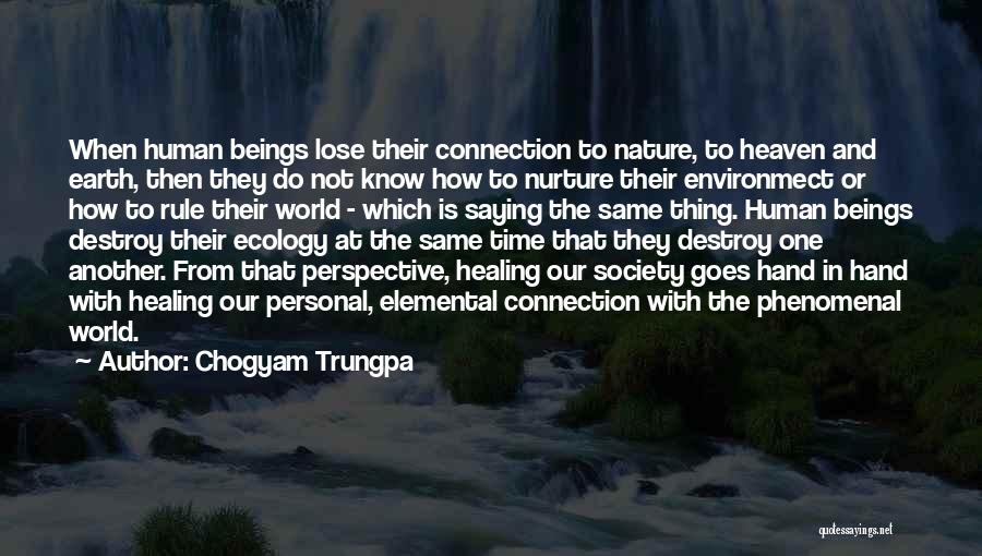 Connection To Earth Quotes By Chogyam Trungpa