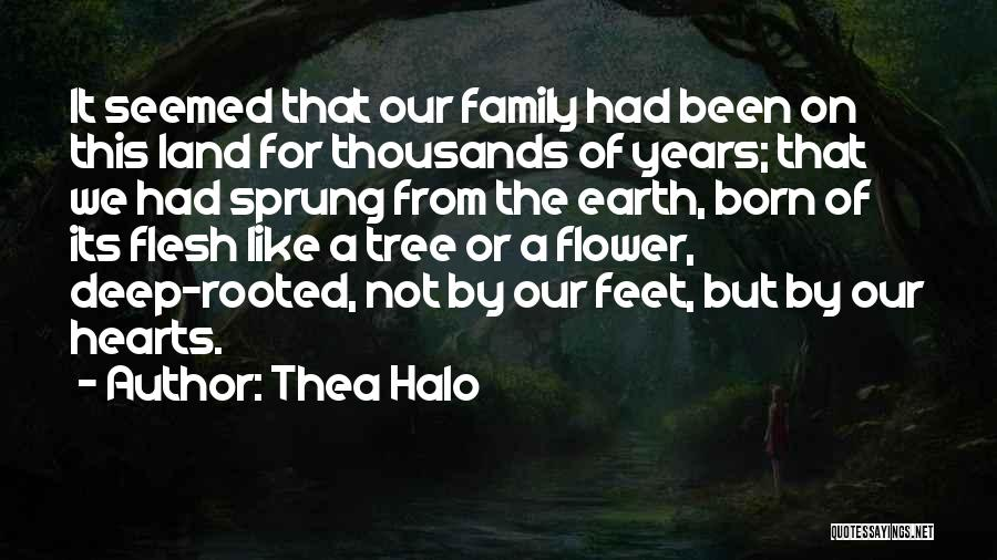 Connection To Earth Quotes By Thea Halo