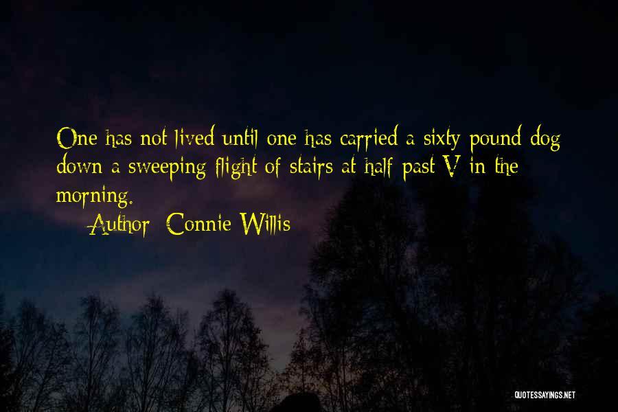 Connie Willis Quotes 1455853