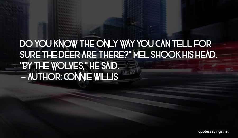 Connie Willis Quotes 854480