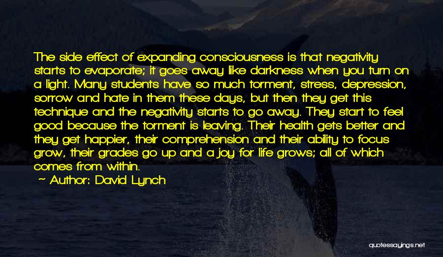 Consciousness Expanding Quotes By David Lynch