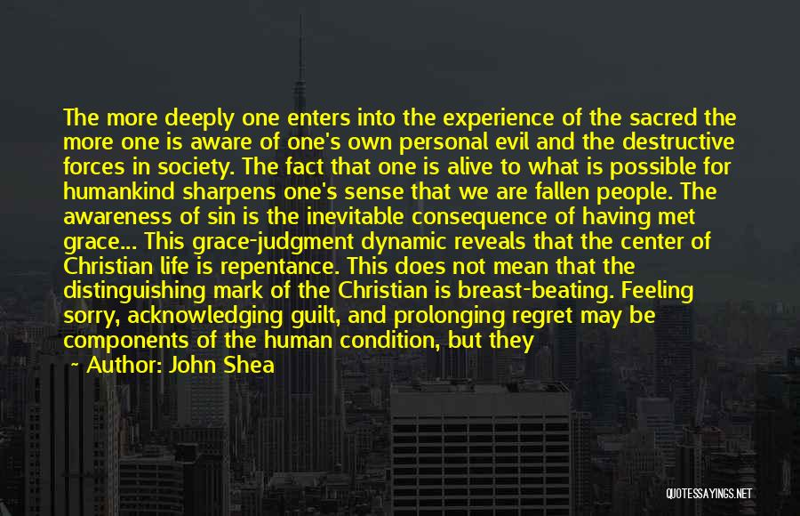 Consequence Of Sin Quotes By John Shea