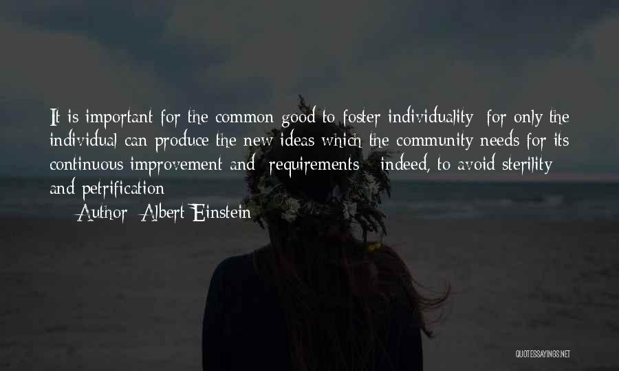 Continuous Improvement Quotes By Albert Einstein