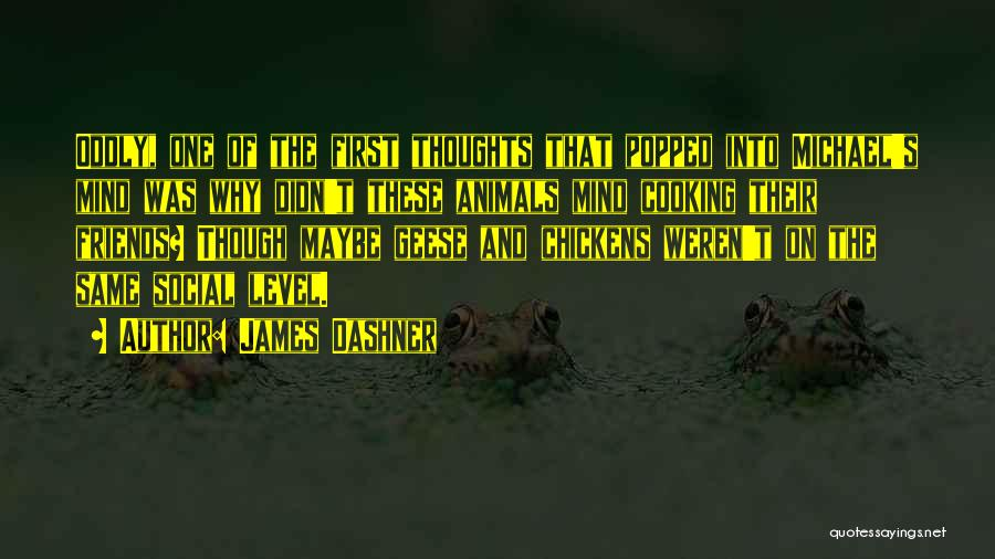 Cooking With Friends Quotes By James Dashner